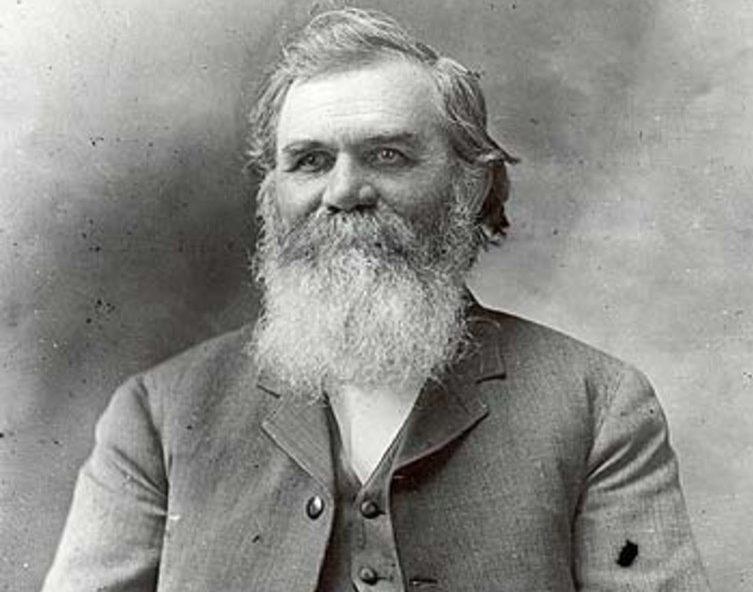 D.D. Palmer